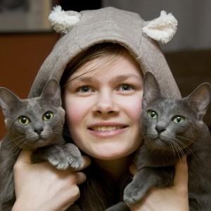 Galeria Hodowla Kotów Rasy Korat Morakotpl