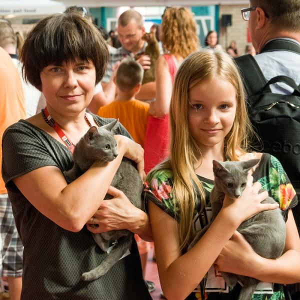 cat show Sopot 2014