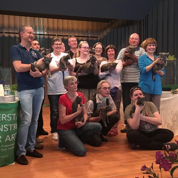 cat show Karben 2018
